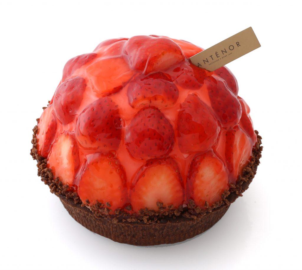19A苺のショコラタルト4寸